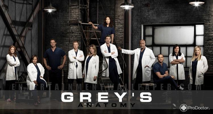 Grey's Anatomy - Seriados Médicos