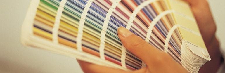 Cartela de cores consultório ginecologia