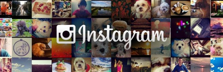Tudo o que você precisa saber sobre o Instagram