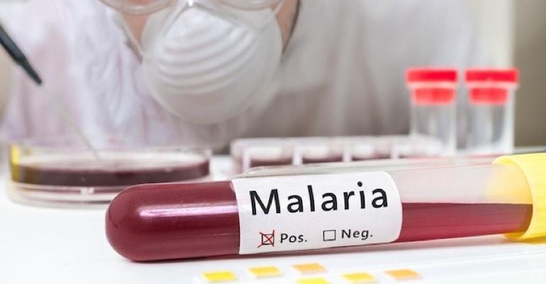 Nanocristais podem otimizar fármacos no tratamento da Malária