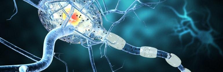 Doenças que desafiam a Medicina - Esclerose Múltipla