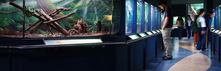 Museus da Saúde: Biológico