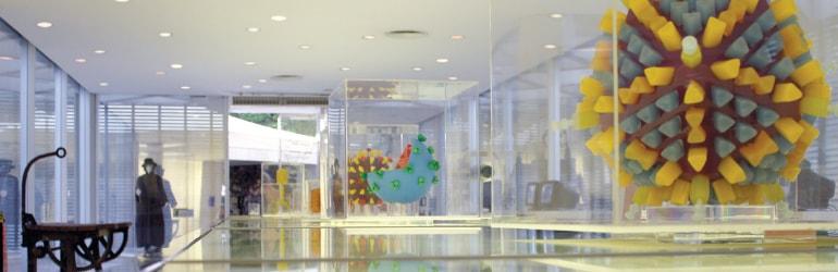 Museus da Saúde: Microbiologia